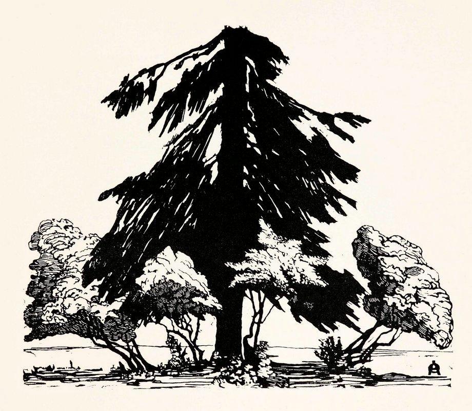 Pine tree - Anna Ostroumova-Lebedeva