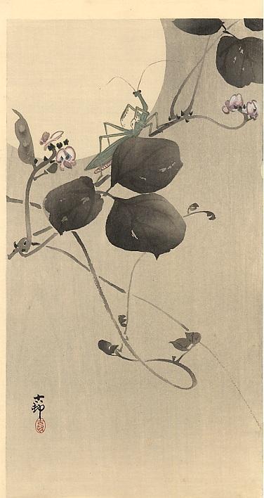 Praying mantis - Ohara Koson