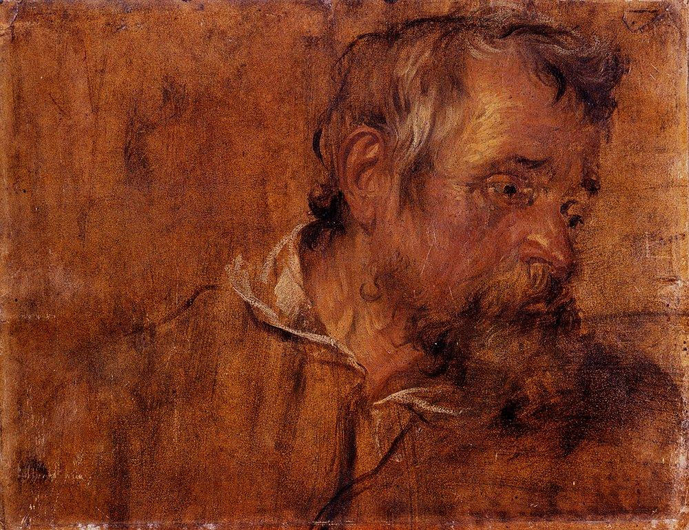Profile Study Of A Bearded Old Man - Anthony van Dyck
