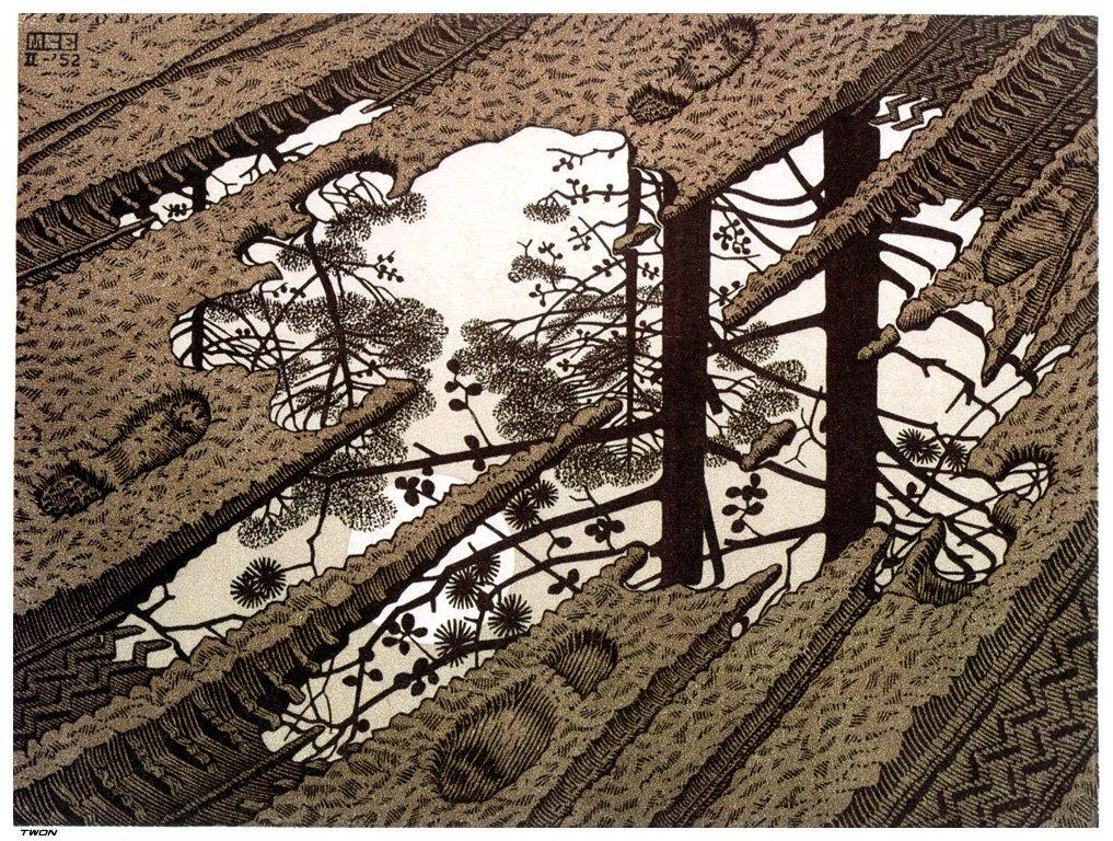 Puddle - M.C. Escher