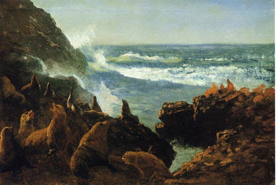 Sea Lions, Farallon Islands - Albert Bierstadt