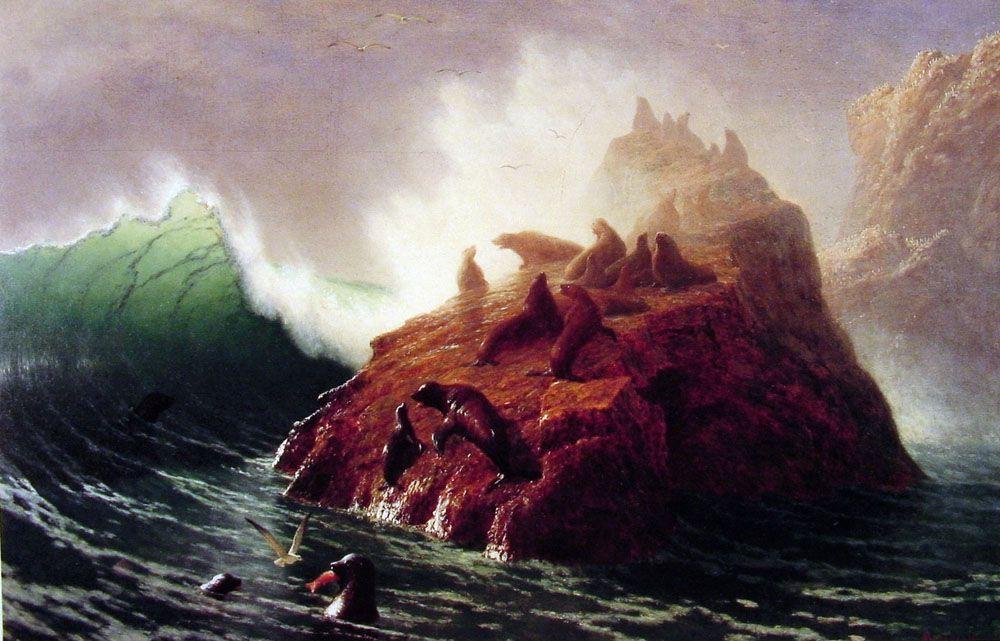 Seal Rock - Albert Bierstadt