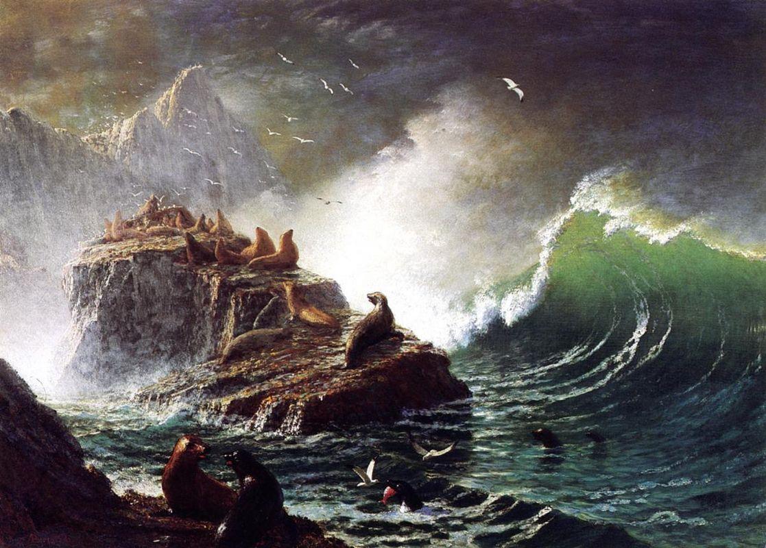 Seals on the Rocks, Farallon Islands - Albert Bierstadt