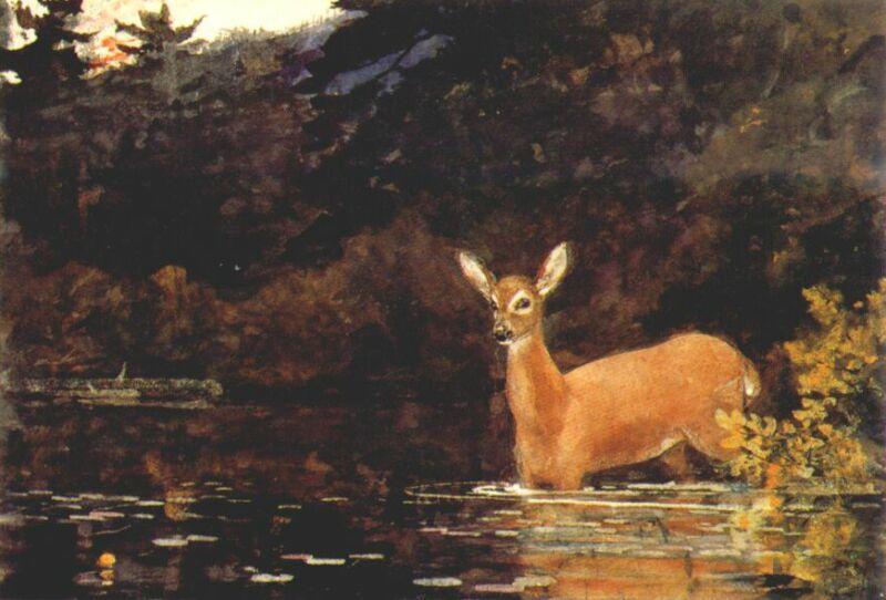 Solitude - Winslow Homer
