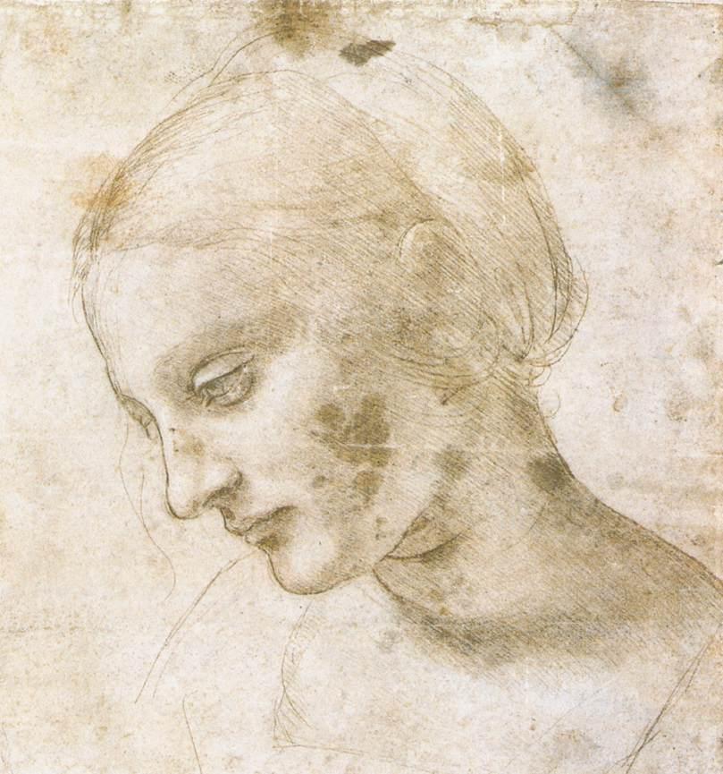 Study of a Woman's Head - Antoine Watteau