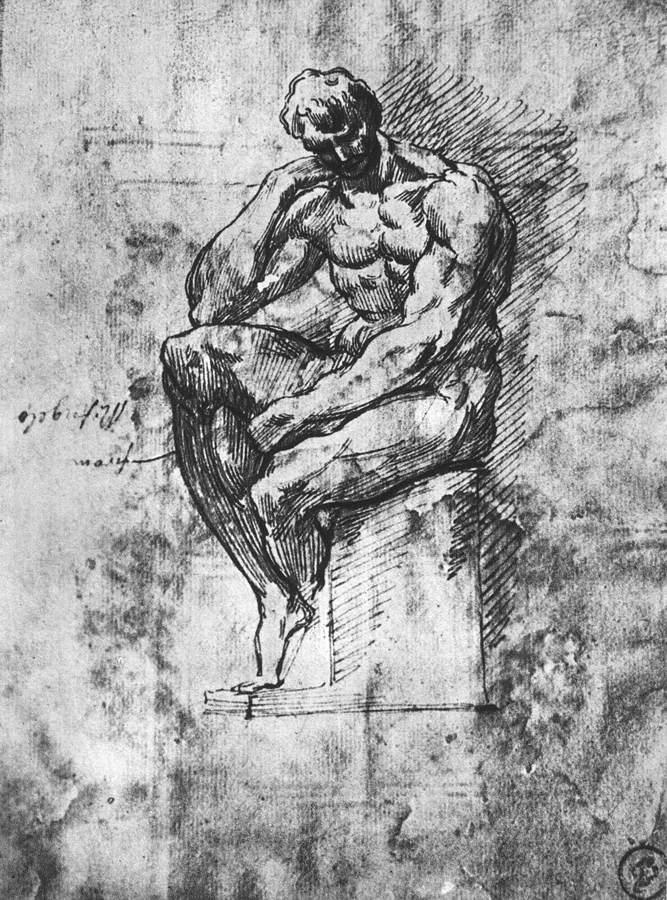 Study of nude man - Michelangelo