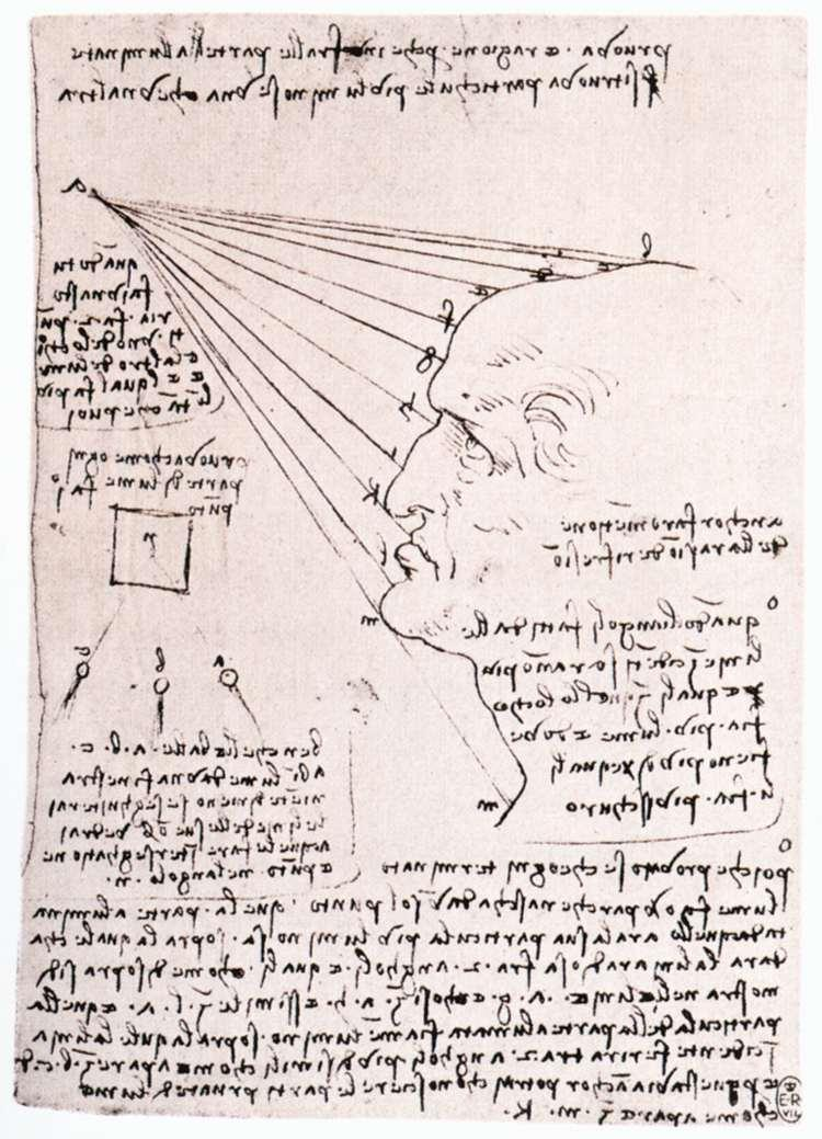 Study of the effect of light on a profile head (facsimile) - Leonardo da Vinci