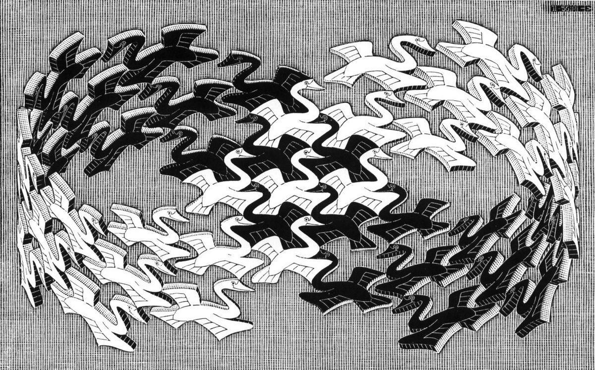 Swans - M.C. Escher