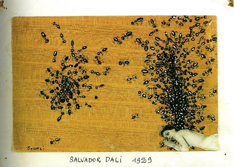 The Ants - Salvador Dali