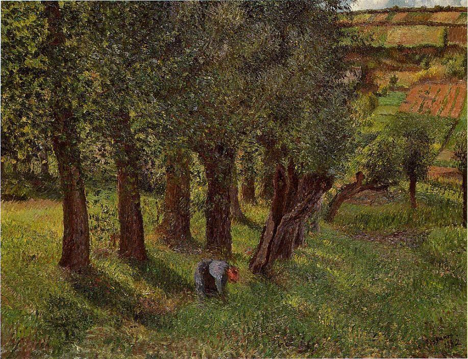 The cabbage of Pontoise - Camille Pissarro