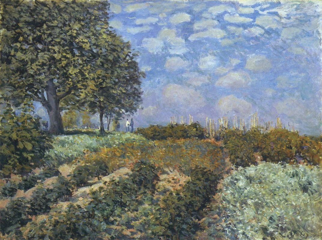 The Fields - Alfred Sisley