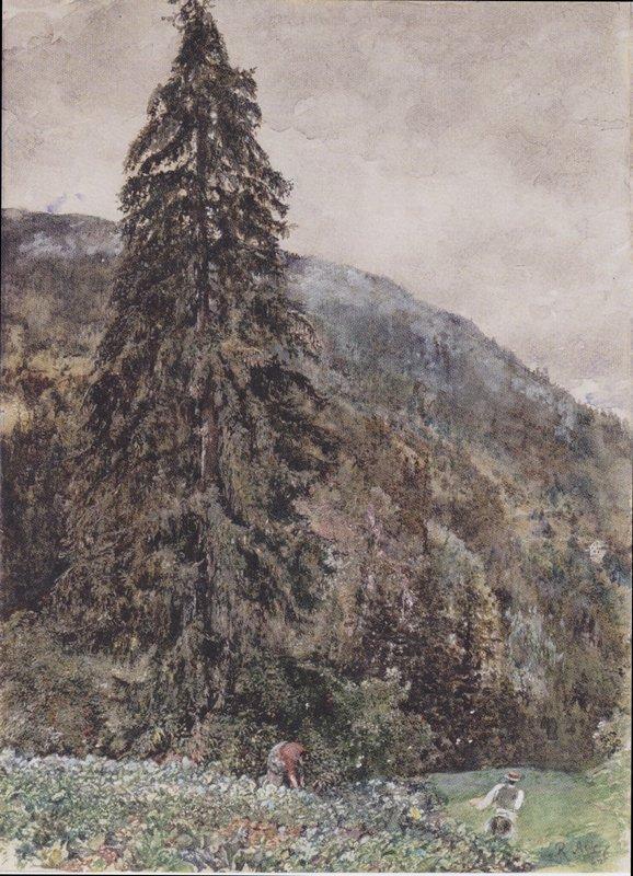 The large pine in Gastein - Rudolf von Alt