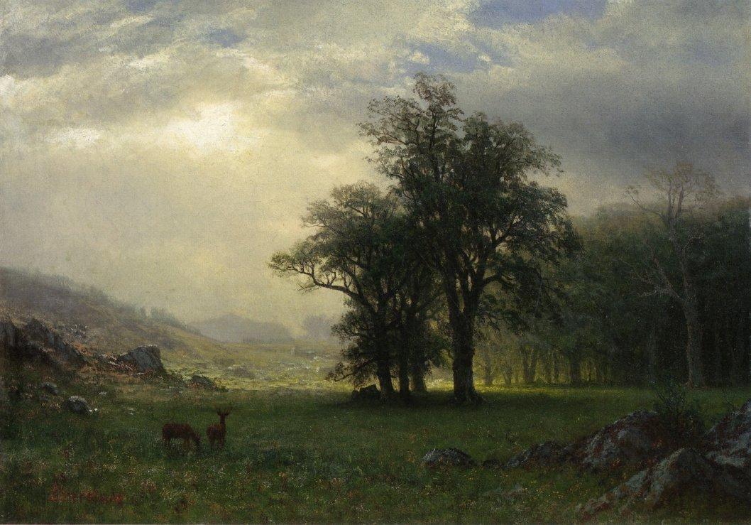 The Open Glen - Albert Bierstadt