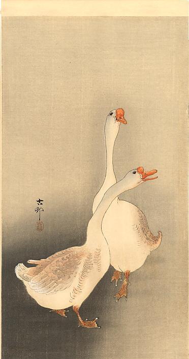 Two white geese - Ohara Koson