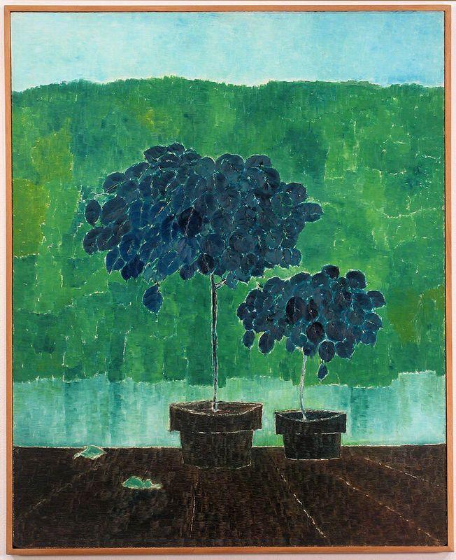 Untitled (2 potted plants) - Kazuo Nakamura