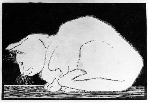White Cat II - M.C. Escher