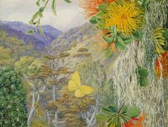 Parasites on Beech Trees, Chili – Marianne North