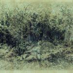 Anthill - Ivan Shishkin