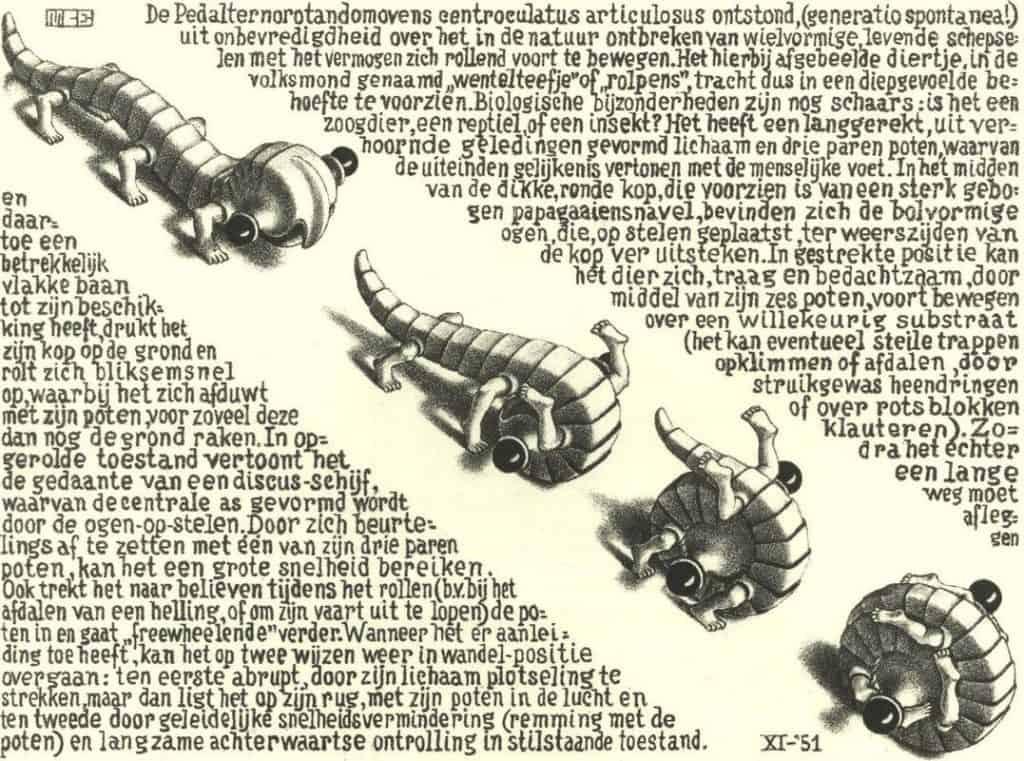 Curl Up -; M.c. Escher
