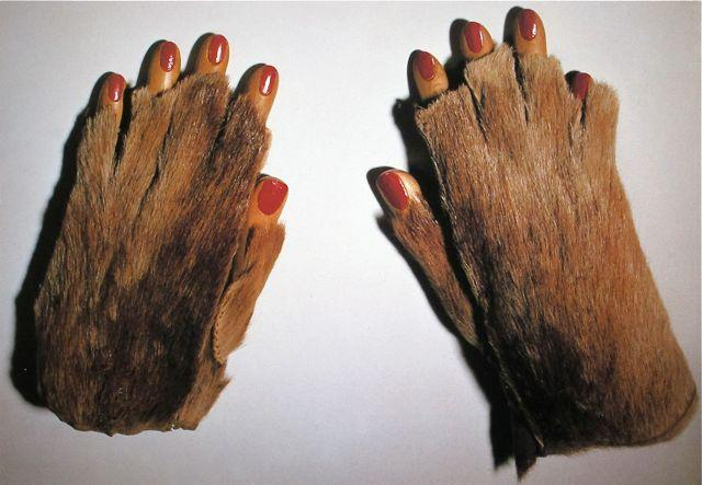 Fur Gloves with Wooden Fingers - Meret Oppenheim