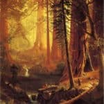 Giant Redwood Trees of California – Albert Bierstadt