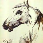 Head of a Horse – Alexander Orlowski