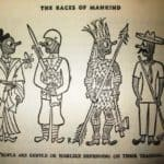 """Illustration for """"The Races of Mankind"""" by Ruth Benedict and Gene Weltfish  – Ad Reinhardt"""