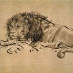 Lion Resting – Rembrandt