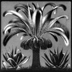 Palm  – M.C. Escher
