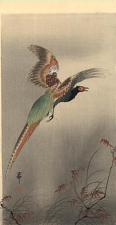 Pheasant in Flight - Ohara Koson