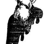 Portrait of Russian philosopher Nikolai Konstantinovich Mikhailovsky  – Felix Vallotton