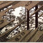Puddle – M.C. Escher