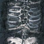 Skeleton on material  – Antoni Tapies