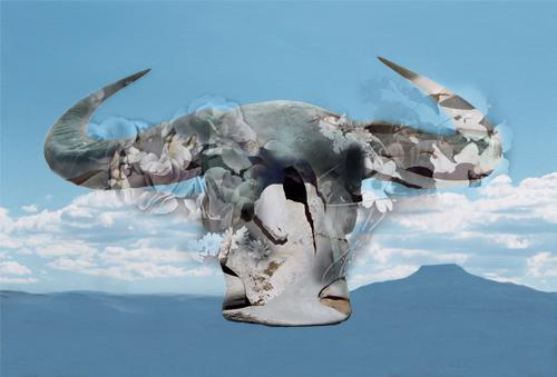 Skull And Flowers - Georgia O'Keeffe