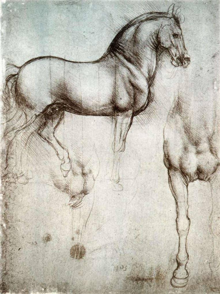 Study of Horses - Edgar Degas