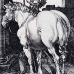 The Large Horse – Albrecht Durer